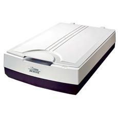 XT6060, 305 x 431,8 mm, 600 x 600 DPI, 24 Bit, Dispositivo Piano, Nero, Bianco, CCD