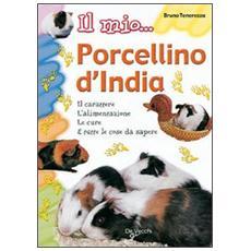 Il mio. . . porcellino d'India