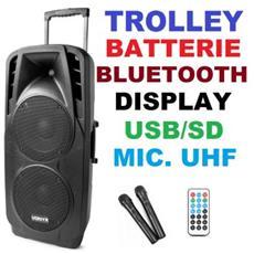 Cassa Amplificata Attiva Trolley 1000w Batterie Bluetooh Usb / sd