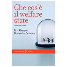 Che cos'è il welfare state