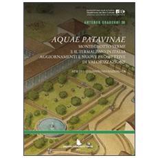 Aquae Patavinae. Montegrotto e il termalismo in Italia. Aggiornamenti e nuove prospettive di valorizzazione