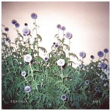 Sekuoia - Flac