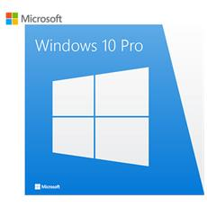 Windows 10 Professional 32/64 Bit Esd Licenza Elettronica