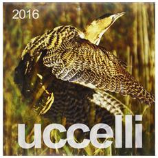 Calendario 2016 - Uccelli