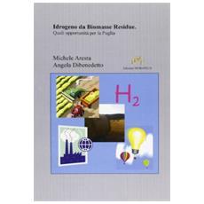 Idrogeno da biomasse residue. Quali opportunità per la Puglia