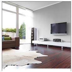 C 97, Pavimento, Speaker set unit, Cablato, 32 - 24000 Hz, Bianco, 3-vie