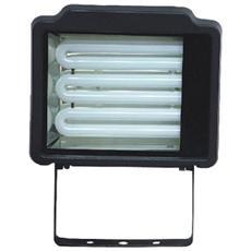 Proiettore Con Lampada Risparmio Energet. 32w
