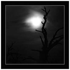 Nine Covens - On The Coming Of Darkness (2 Lp)