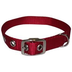 Collare In Nylon Per Cani Di Media E Piccola Taglia 25x600 Mm Colori Assortiti
