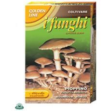 Micelio Essicato Di Fungo Pioppino Confezione Da 100gr.