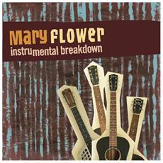 Mary Flower - Instrumental Breakdown