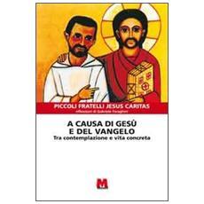 A causa di Gesù e del Vangelo. Tra contemplazione e vita concreta