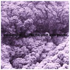 Trentemoller - Into The Great Wide (2 Lp)