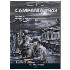 Campania 1943. Vol. 3: Provincia di Avellino.