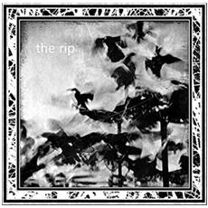 Rip (The) - The Rip