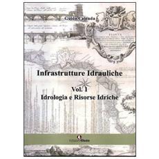 Infrastrutture idrauliche. Vol. 1: Idrologia e risorse idriche