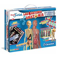 Focus Junior - Laboratorio Di Anatomia