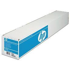 Carta fotografica satinata professionale HP Photo Paper 300 gsm - 1118 mm x 15.2 m (44 pollici x 50 piedi)