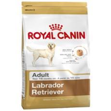 Cibo per cani Labrador Retriever Adult 12 kg