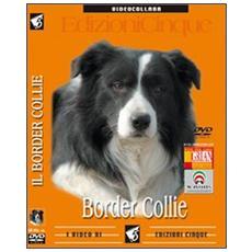 Border Collie. DVD