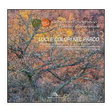 Concorso fotografico foreste casentinesi. Luci e colori nel parco