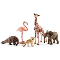 Animali Wild Life