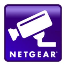 NETGEAR - ReadyNAS Surveillance Licenza per 1 Telecamera