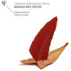 Bach - Mottetti Bwv 225-230 (2 Lp)