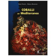 Coralli del Mediterraneo