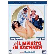 Dvd Marito In Vacanza (il)