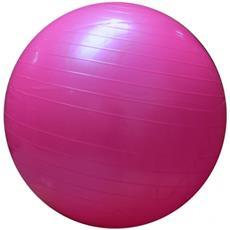 Palla Pilates Fitball Rosa Fisioterapia Quadricipiti Spalle Stretching Palestra