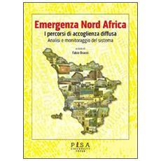 Emergenza Nord Africa. I percorsi di accoglienza diffusa. Analisi e monitoraggio del sistema