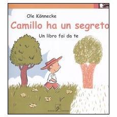 Camillo ha un segreto. Un libro fai da te
