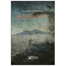 Napoli in croce