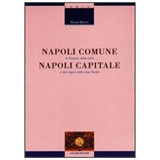 Napoli comune, Napoli capitale. Le finanze della citt� e del Regno delle Due Sicilie