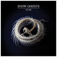 Snow Ghosts - Husk
