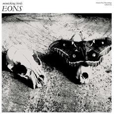 """Mimicking Birds - Eons (12"""")"""