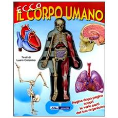 Ecco il corpo umano