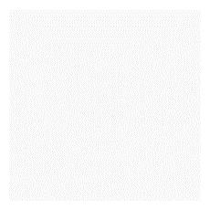 (Savage) Sfondo 1,35x11m bianco