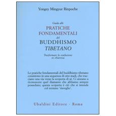 Guida alle pratiche fondamentali del buddhismo tibetano. Trasformare la confusione in chiarezza