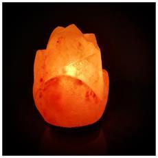 Lampada Di Sale Himalayano A Forma Di Rosa Da 3 Kg