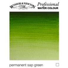 503 Artist 1/2 Godet Verde Vescica Gruppo 1