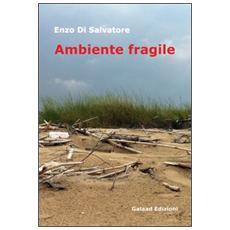 Ambiente fragile