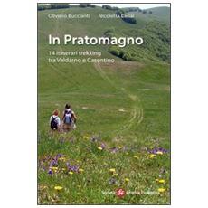 In Pratomagno. 14 itinerari trekking tra Valdarno e Casentino