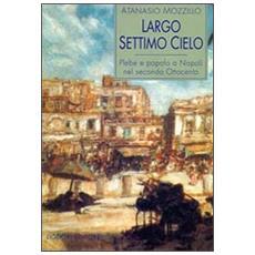 Largo Settimo Cielo. Plebe e popolo a Napoli nel secondo Ottocento
