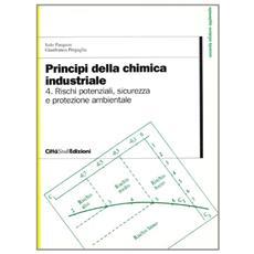 Principi della chimica industriale. Vol. 4: Rischi potenziali, sicurezza e protezione ambientale nell'Industria chimica.