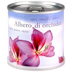 Orchidea Fiori In Lattina Macflowers Made In Germany Cm 7 5x8 H