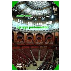 I gruppi parlamentari