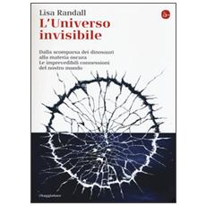 L'universo invisibile. Dalla scomparsa dei dinosauri alla materia oscura. Le imprevedibili connessioni del nostro mondo