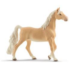 Cavalla American Saddlebred (5) New 01-2020